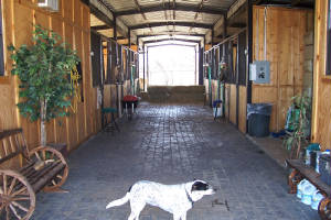 Horse Barn With Living Quarters